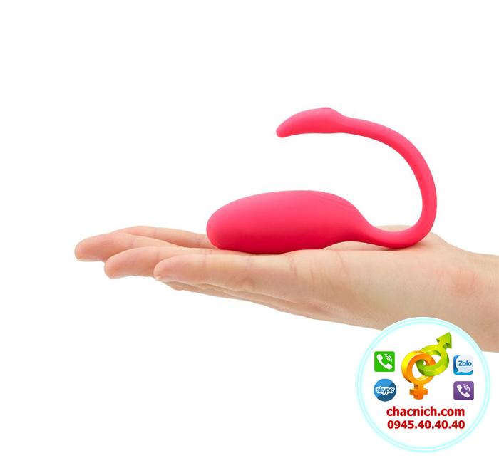 Trứng rung thiên nga Flamingo đa chức năng